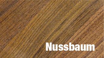 Stufen Holz Massivholz Nussbaum